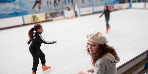 ice-rink-710x460.png